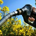 biofuel_pump_flowers_150