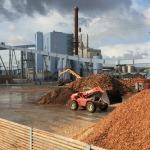 biomass_europe_150