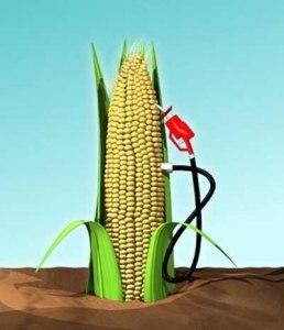 corn-ethanol-pump_100172125_m