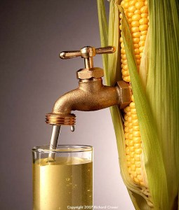 ethanol_corn_tap_taxpayers_for_common_sense