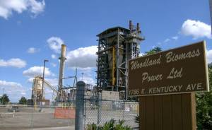 Woodland-Biomass-Ltd-21