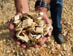 rhode island pr biomass
